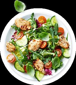 Paleo Ernährungsplan Kochplan